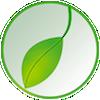 Green Leaf Tai Chi